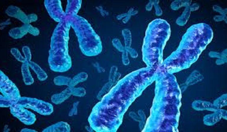 آزمایش ژنتیک سیتوژنتیک چیست؟