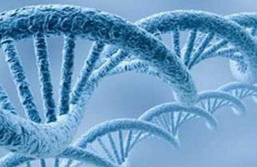 نقش ژنتیک در سرطان