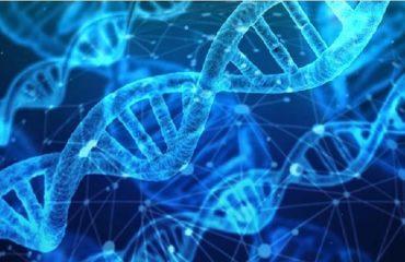 آزمایشگاه ژنتیک اصفهان ضرورت انجام آزمایش ژنتیک