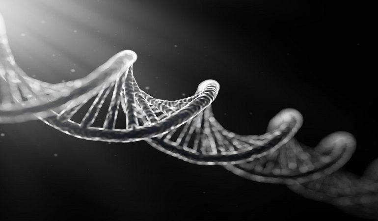 تشخیص بیماری ژنتیکی در ازدواج های فامیلی با آزمایش NGS