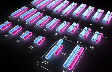 آزمایشگاه ژنتیک اصفهان   کاریوتایپ و اختلالات کروموزومی جنین