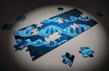 آزمایشگاه ژنتیک اصفهان   عوامل خطرآفرین در سندرم لینچ