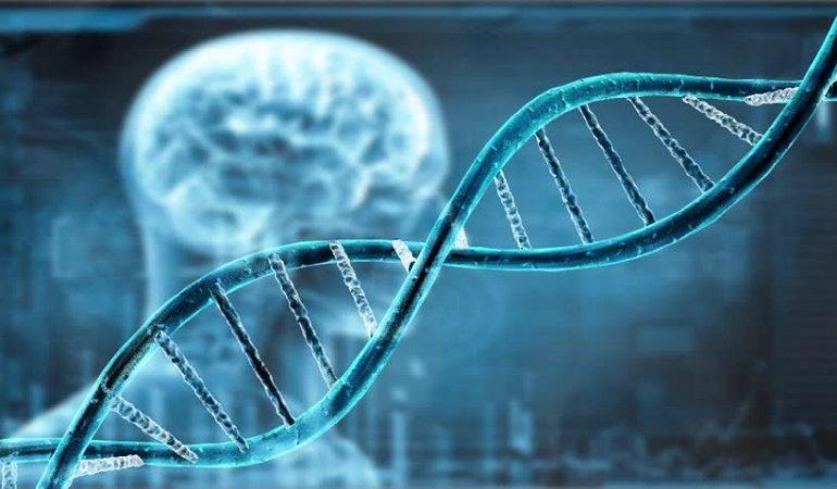 جهش در ژن BRCA2 عامل بروز سرطان های ارثی