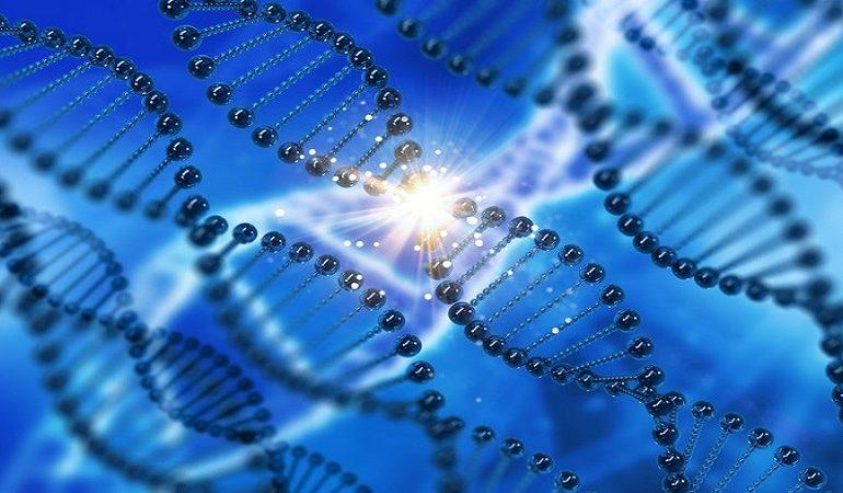 سندروم کودن و افزایش احتمال بروز انواع سرطان