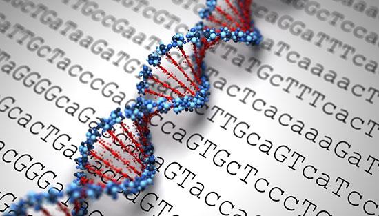 آزمایش شناسنامه ژنتیکی فردی