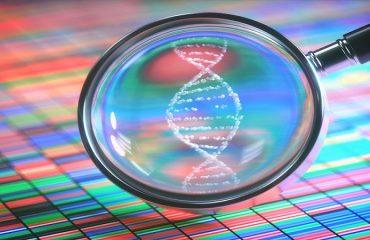 آزمایشگاه ژنتیک اصفهان   پیشگیری از سرطان تخمدان ارثی
